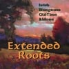 Extended Roots: Extended Roots