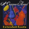 Extended Roots: A Common Thread