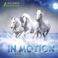 A.G.A.M.A | In Motion