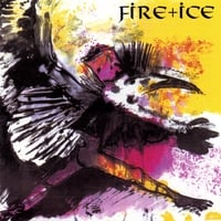 Fire + Ice | Birdking