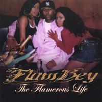 FlamBey | The Flamerous Life