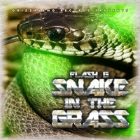 Flash G | Snake in the Grass