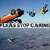Fleas | Stop Caring