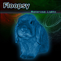 Floopsy | Mysterious Lights