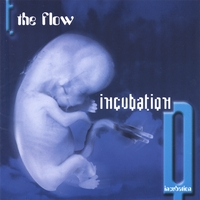 The Flow | Incubation