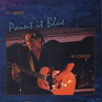 Fly Amero | Paint It Blue