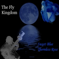 The Fly Kingdom | Sweet Blue Thornless Rose