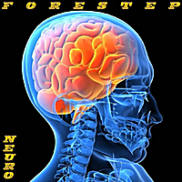 Forestep | Neuro