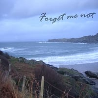 Forget Me Not | Forget Me Not