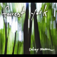 Forrest York | Rainy Season