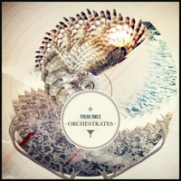 Freak Owls | Orchestrates