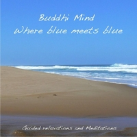 Buddhi Mind | Where Blue Meets Blue