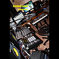 Gaylord Lapel | Short Circuit - Single