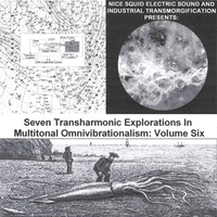 Glenn Weyant | Seven Transharmonic Explorations in Multitonal Omnivibrationalism, Vol. Six (Nice Squid Electric SOund and Industrial Transmorgification Presents)