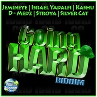 Various Artists | Going Hard Riddim