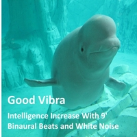 Goodvibra | Intelligence Increase With 9' Binaural Beats and White Noise