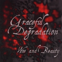 Graceful Degradation | Woe and Beauty