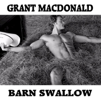 Grant MacDonald | Barn Swallow