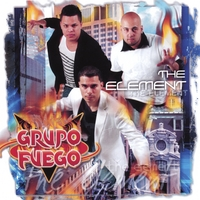 Grupo Fuego | The Element
