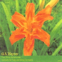 G.S. Haynes | Four String Symphonies