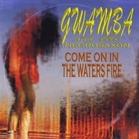 Gwamba And The Negrosaxon | Come On In The Waters Fire