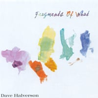 Dave Halverson | Fragments of What
