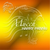 Harry Pannu | Mucch