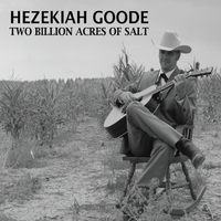 Hezekiah Goode | Two Billion Acres of Salt