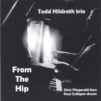 Todd Hildreth Trio | From The Hip