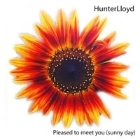 Hunterlloyd | Pleased to Meet You (Sunny Day)