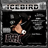 Icebird | Cold World