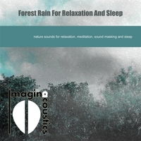 Imaginacoustics | Forest Rain for Relaxation and Sleep