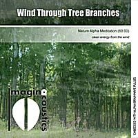Imaginacoustics | Wind Through Tree Branches (Nature Alpha Meditation)