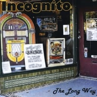 incognito | The Long Way