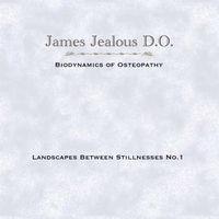 James Jealous D.O. | Landscapes Between Stillnesses No. 1