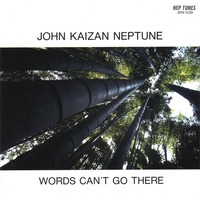 John Kaizan Neptune | WORDS CAN'T GO THERE