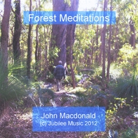 John Macdonald | Forest Meditations