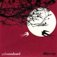 Josh Woodward | Dirty Wings