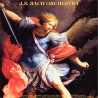 J.S. Bach Orchestra & Walter Rinaldi | Vivaldi: The Four Seasons - Pachelbel: Canon in D - Bach: Air on the G String - Albinoni: Adagio - Mendelssohn: Wedding March - Schubert: Ave Maria - Listz: Love Dream & La Campanella - Walter Rinaldi: Works