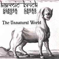Karmic Brick | The Unnatural World