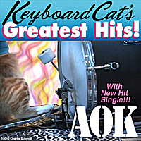 Keyboard Cat | A OK