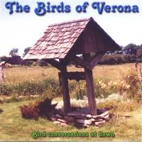 King Tet | The Birds of Verona