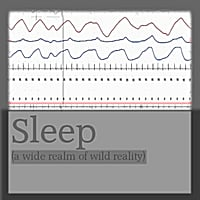Kristin Prevallet | Sleep (A Wide Realm of Wild Reality)