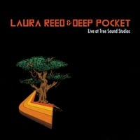Laura Reed & Deep Pocket | Live at Tree Sound Studios