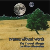 The Tunnel Singer Lee Ellen Shoemaker | Dreams Without Words