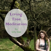 Lily Oak | Living Tree Meditation
