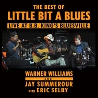 Little Bit a Blues | The Best of Little Bit a Blues: Live At B.B. King's Bluesville (feat. Warner Williams, Jay Summerour & Eric Selby)