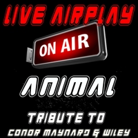Live Airplay | Animal (Tribute to Conor Maynard and Wiley)