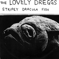 The Lovely Dreggs | Stripey Dracula Fish