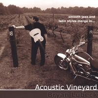 Bryan Lubeck | Acoustic Vineyard